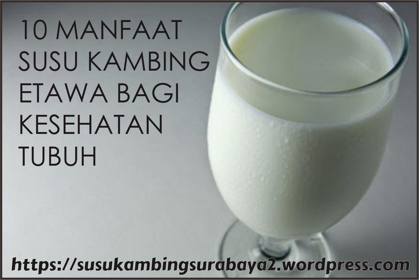 Manfaat Susu Kambing Etawa Susu Kambing Etawa